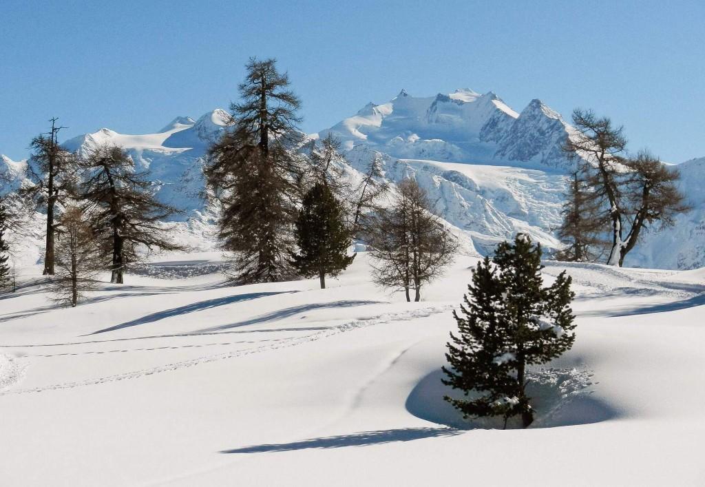 Winterwanderweg und Loipe Moosalp, im Hintergrund Mischabelgruppe 4.545 m