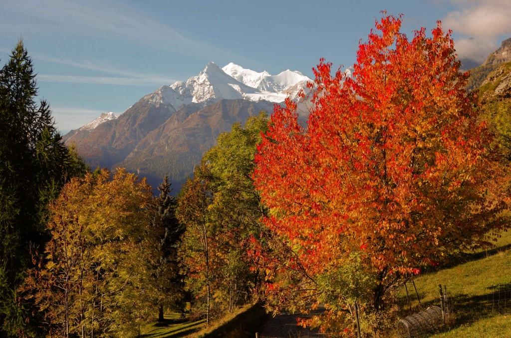 Herbststimmung, Anfang Oktober, in Richtung Embd