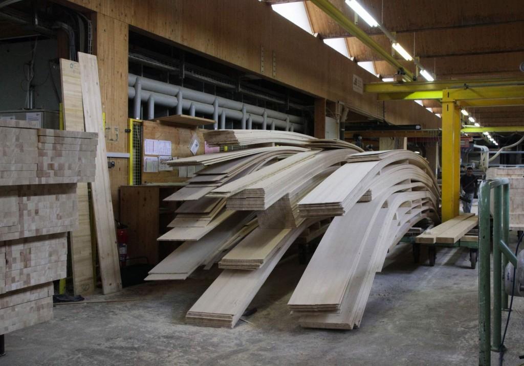 Hier sind die 6 mm dünnen Holzscheiben zu sehen, die die Bandsäge vom Holzblock abgeschnitten hat.
