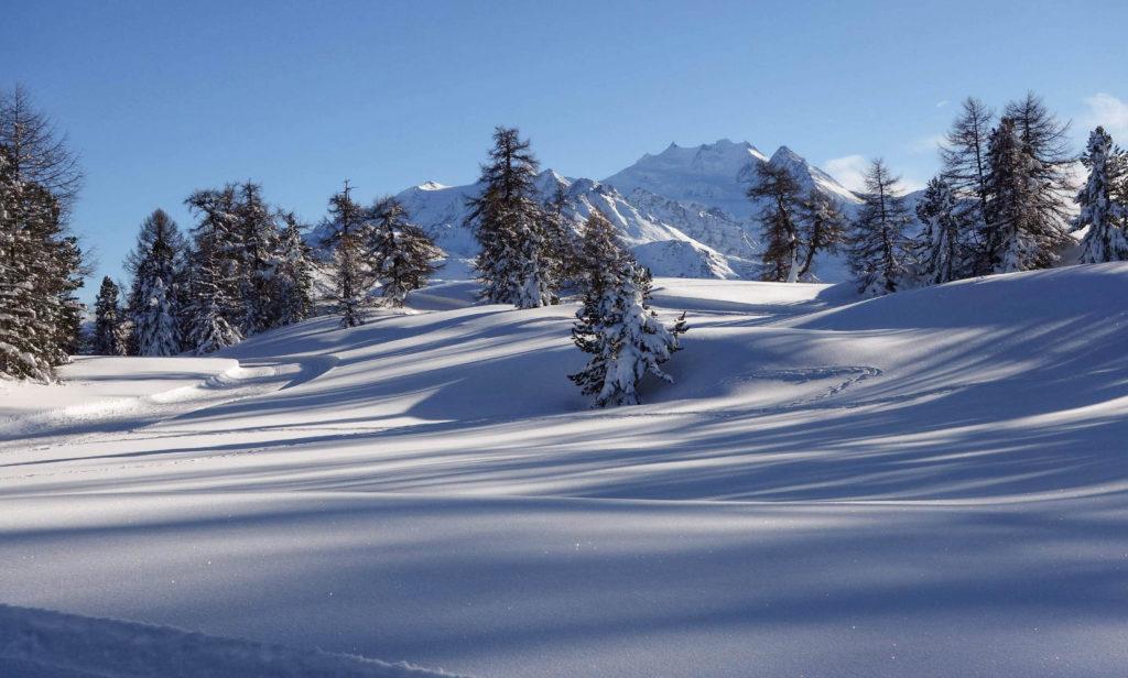 Winterwanderweg + Loipe auf der Moosalp